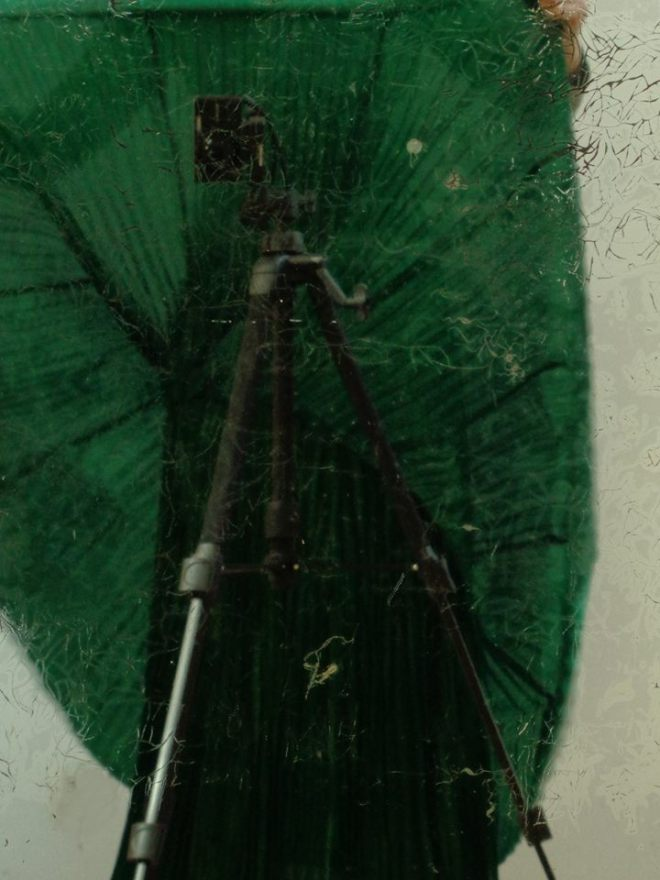 photo Adèle Nègre
